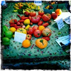 Идеи из растений и фруктов