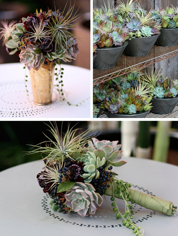 Succulent-wedding-decor-primadonnabride.co_.za_