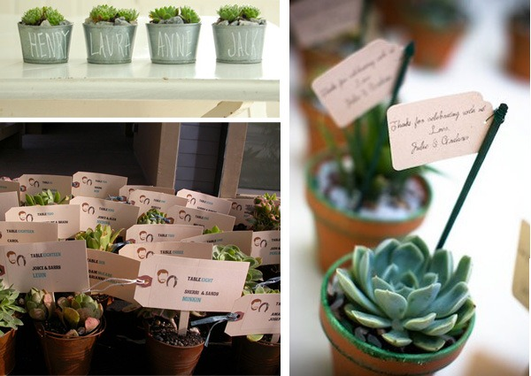 succulent-wedding-favours1