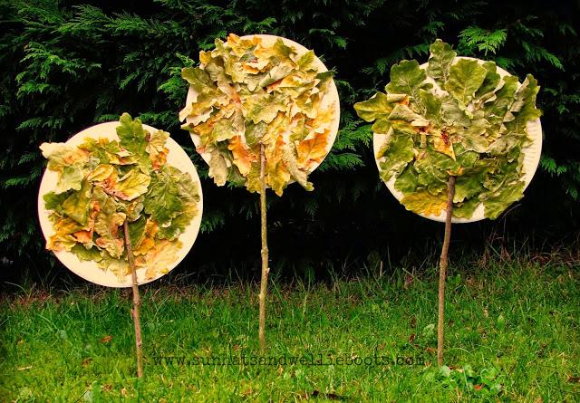 plate-tree-7